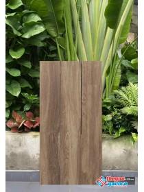 Gạch giả gỗ 19,5x120 ấn độ