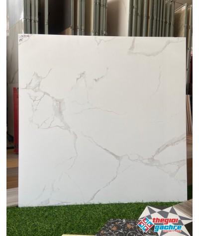 Gạch lát nền tông trắng 80x80 trung quốc